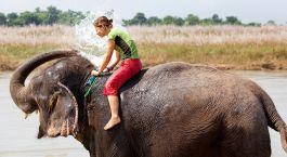 Nepal Safari auf dem Rücken eines Elefanten- Nepal Holidays