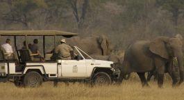 Safari tours at Camp Moremi, Chobe National Park, Botswana