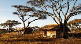 Exterior view at Mara Under Canvas in Serengeti (Northern), Tanzania