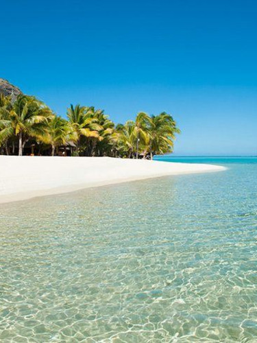 Menschenleerer weißer Sandstrand auf Mauritius mit Palmen und Bergfelsen