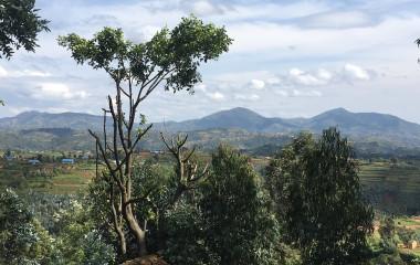 Enchanting Travels Rwanda Tours Huye Southern Province - Butare