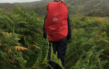 Rückansicht von Tourist mit großem roten Rucksack in dichter Vegetation