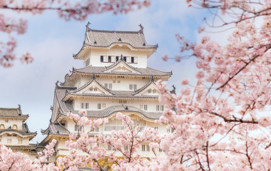 Enchanting Travels Japan Tours Himeji castle with sakura cherry blossom festival in Japan