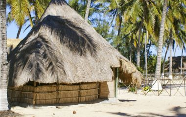 Paradise Bungalow surrounded by coconut palm trees, Savane beach, Beira, Mozambique, Africa