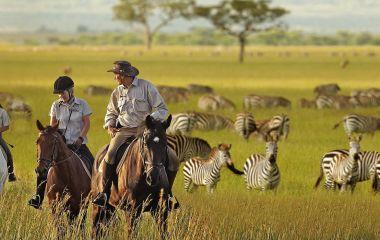 Enjoy Serengeti Safari in Tanzani