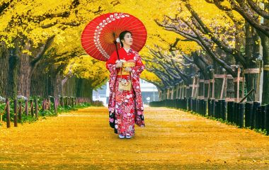 Beautiful girl wearing japanese traditional kimono at row of yellow ginkgo tree in autumn. Autumn park in Tokyo, Japan