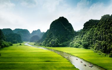Rice field and river, Ninh Binh, vietnam landscapes