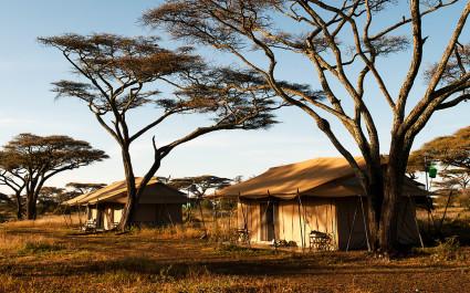 Außenansicht im Mara Under Canvas Hotel in Nördliche Serengeti, Tansania
