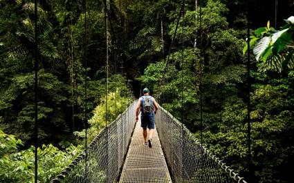 Baumkronenpfad im Monteverde Nebelwald