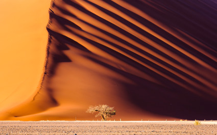 Dune 45, a 170m high dune made from red sand, Sossusvlei, best road trips