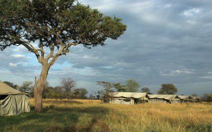 Exterior view of camp tents at Serengeti North Wilderness Camp in Northern Serengeti, Tanzania