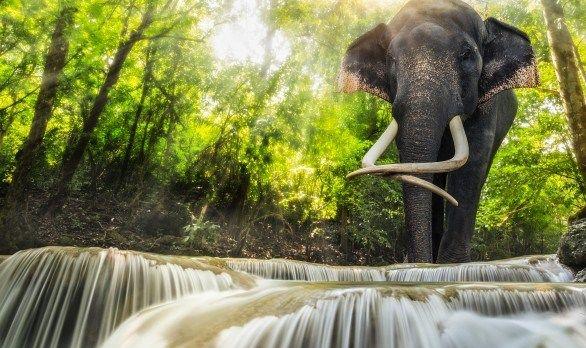 erawan-waterfalls-thailand-586x444