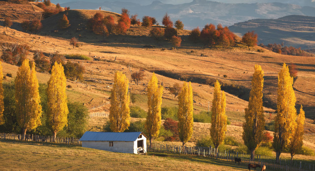 South-America-Coyhaique-Chile-Enchanting-Travels-Safety-in-Chile