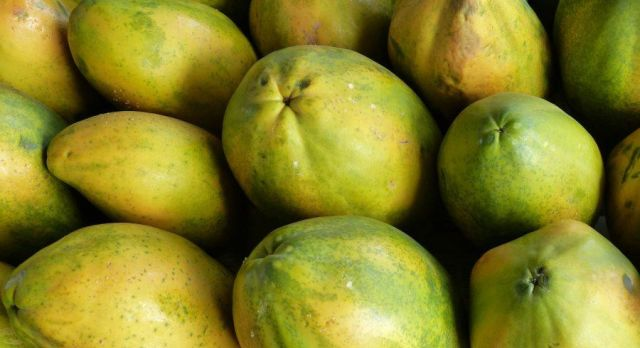 Papaya Zimbabwe Delicious Desserts