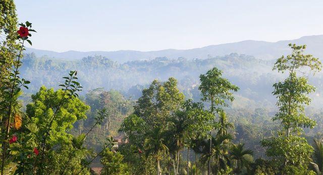 Highlights of Sri Lanka - Idyllic landscapes