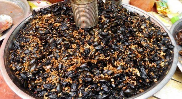 Frauenurlaub in Asien - Käfer Essen