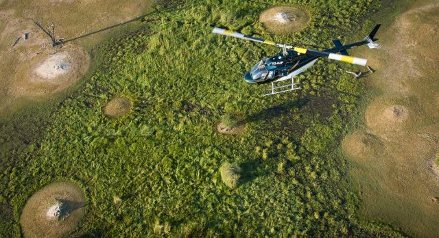 Discover the largest inland delta in the world at Okavango