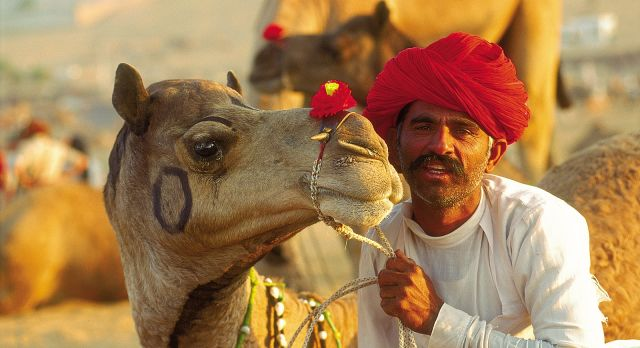 Ein Kamelreiter hält die Zügel von seinem Kamel