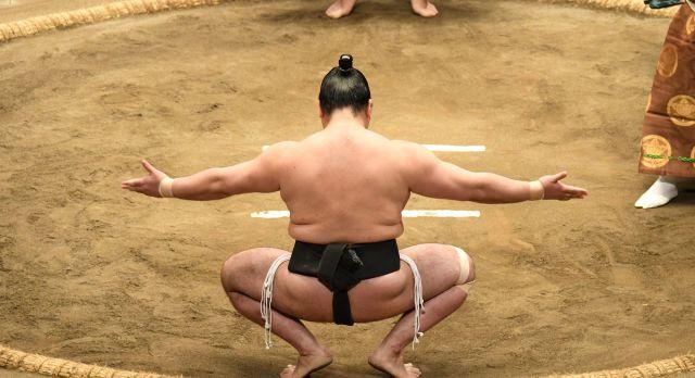 Sumo wrestling in Tokyo