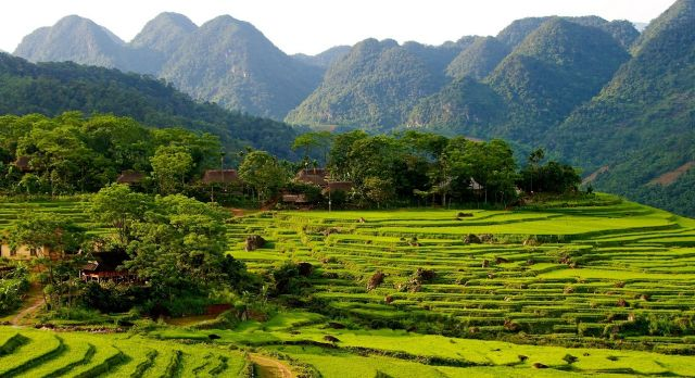 Rice terraces in Pu Luong - Vietnam Destinations