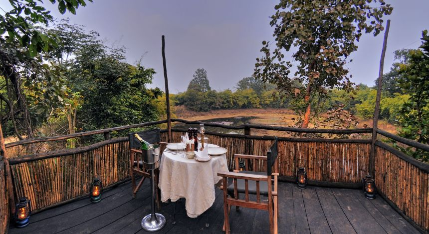 Safari in India: Treehouse hideaway Bandgavgarh - viewing deck