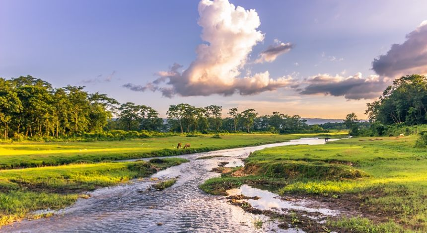 Landschaft mit Fluss im Chitwan-Nationalpark in Nepal