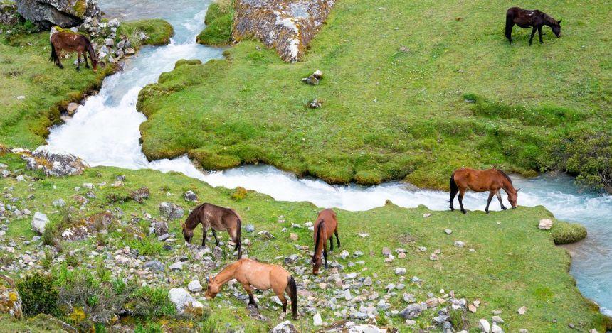Andean landscape on the Salkantay Trek