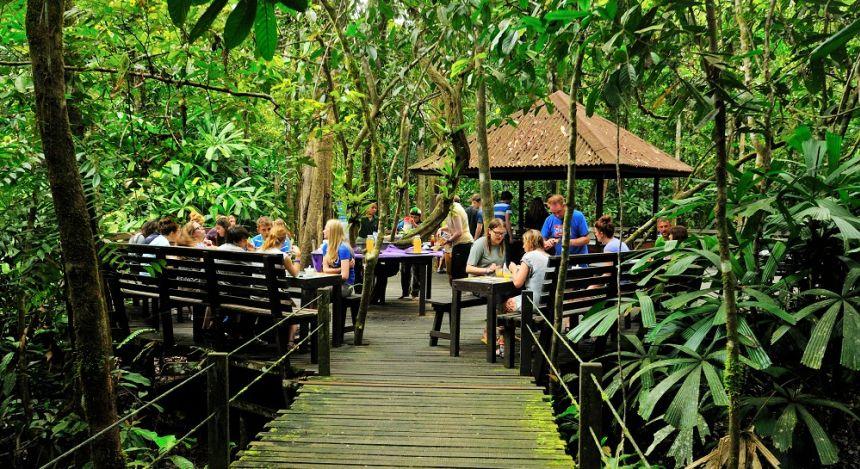 Enchanting Travels - Malaysia Tours -Kinabatangan-Abai Jungle Lodge - Frühstück im Grünen