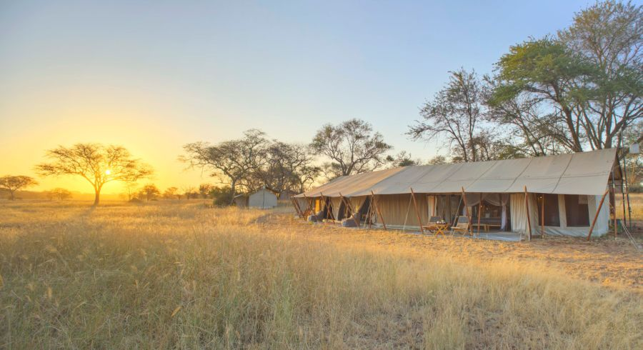 Tansania Safari Camp