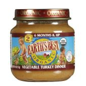 Earths Best Organic Stage 2 Delicious Din Din Vegetable Turkey Dinner Baby Food