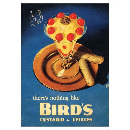Dementia friendly Birds Cutsard and Jellies - A4 (210 x 297mm)