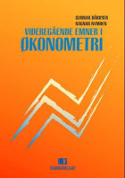 Videregående emner i økonometri