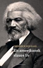 En amerikansk slaves liv