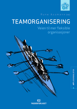 Teamorganisering