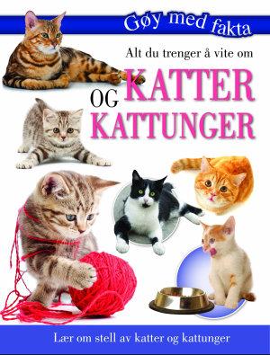 Alt du trenger å vite om katter og kattunger