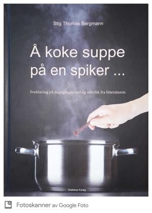 Å koke suppe på en spiker...