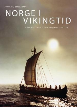 Norge i vikingtid