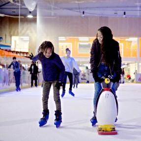 Ice skating 287