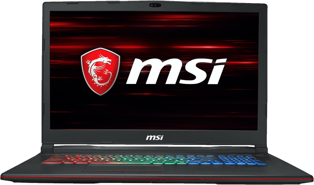 Schwarz MSI GP73 8RE-041DE Leopard.1
