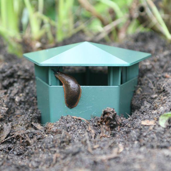 Slug-Busters from Haxnicks