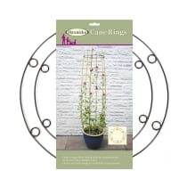 The Garden Cane Ring for Plants and Crops from Haxnicks