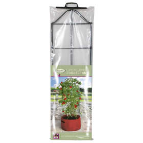 Tomato (climbing) Patio Planter
