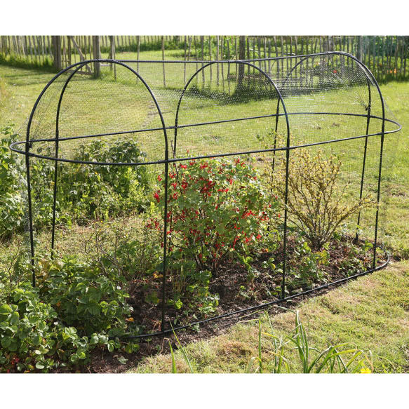 Long Steel Fruit Cages from Haxnicks