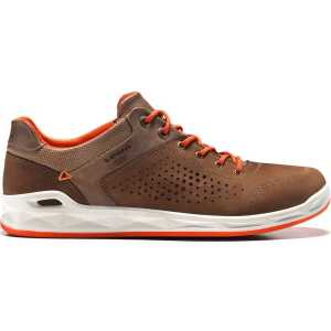 Lowa San Francisco GTX Surround Walking Shoe