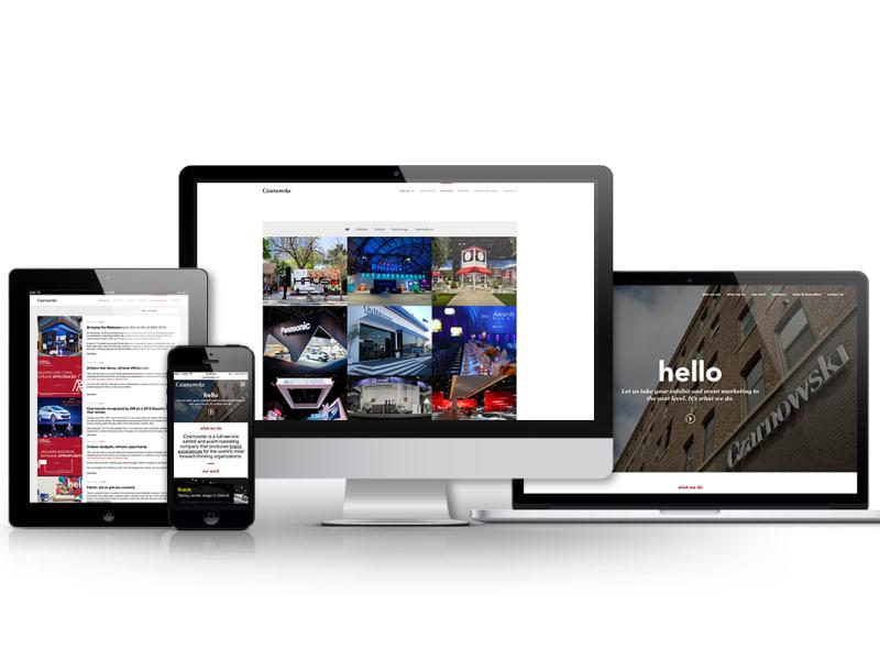 Czarnowski.com Website Redesign