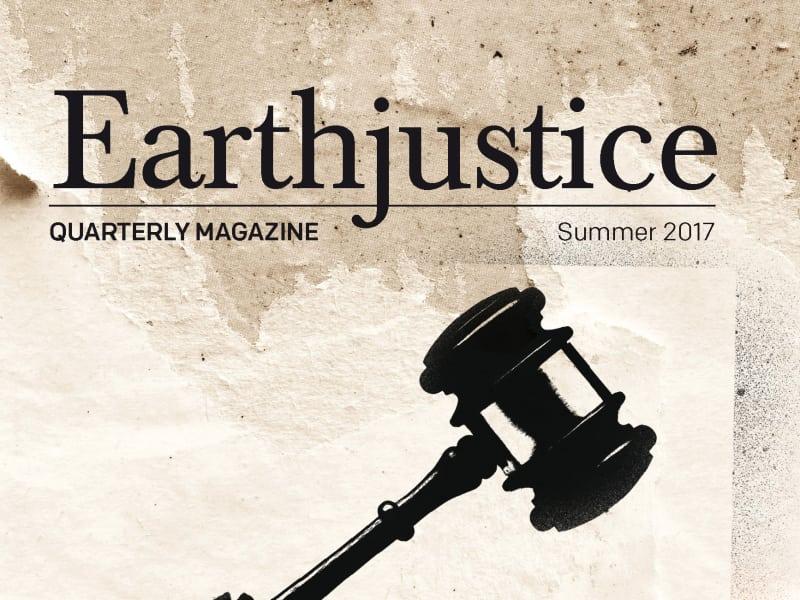 Earthjustice Quarterly Magazine