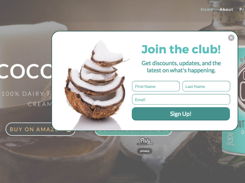 Wordpress Divi Theme Website
