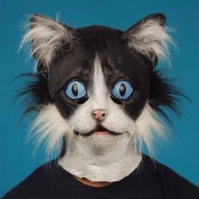 Mask-Cat