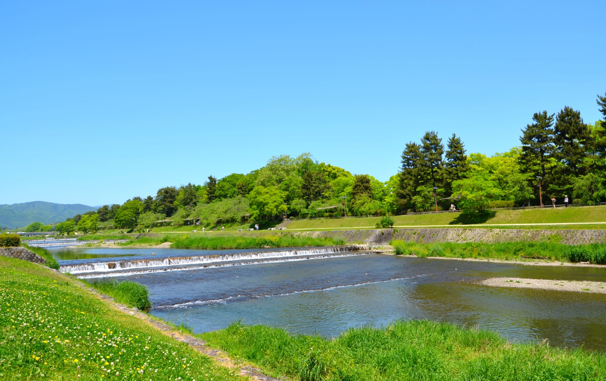 takagamine & murasakino area