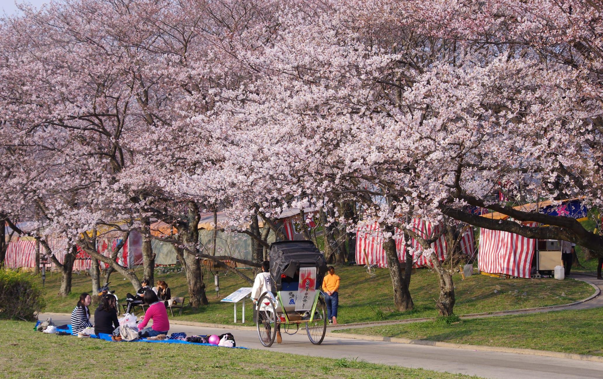 Miyagawa-Tsutsumi Park